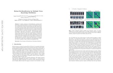 Robust Re-Identification by Multiple Views Knowledge Distillation