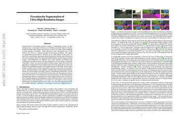 Foveation for Segmentation of Ultra-High Resolution Images