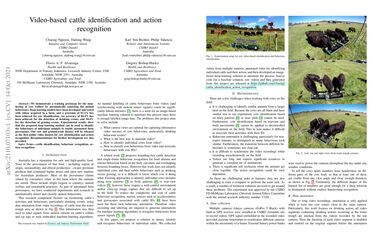 /chuong/ Video-based cattle identification and action recognition