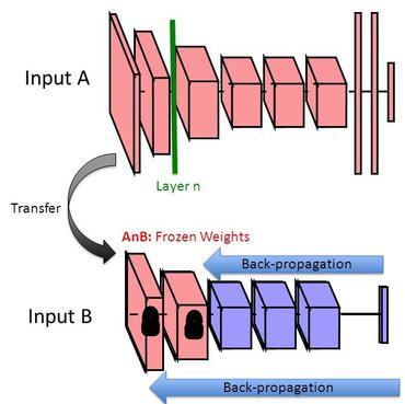 Papers With Code : Transfer Learning