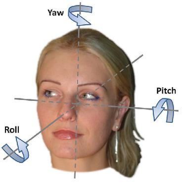 Papers With Code : Head Pose Estimation